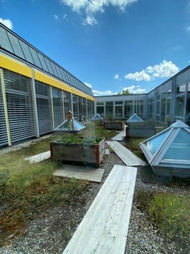 Schulhausgarten